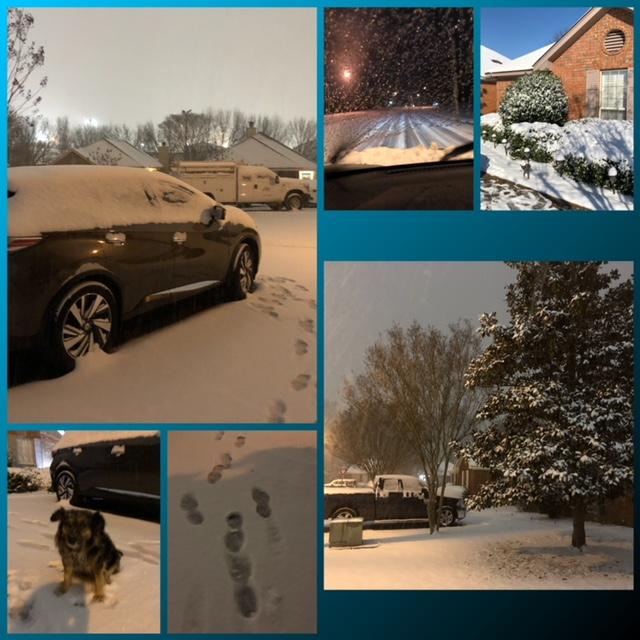 Montgomery January Snow Day